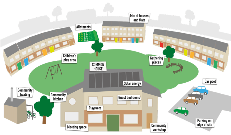 About cohousing infographic